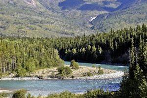 Yukon Provincial Nominee Program